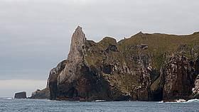Antipodes Island / ©: Bob Zuur / WWF