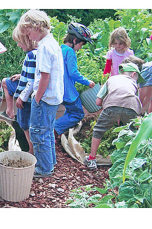 Children harvesting potatoes, Lincoln Envirotown. The school is 1 of 18 that received funding from ...  	© Cello Robertson / LET