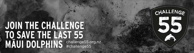 Challenge 55