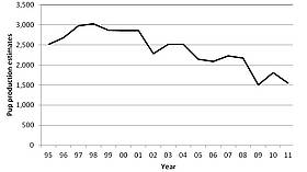 A graph showing the decline of sealion pups from 1995 to 2011 / ©: DOC