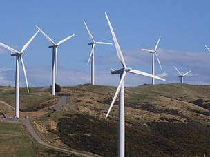 White wind turbines in New Zealand farmland against a clear blue sky